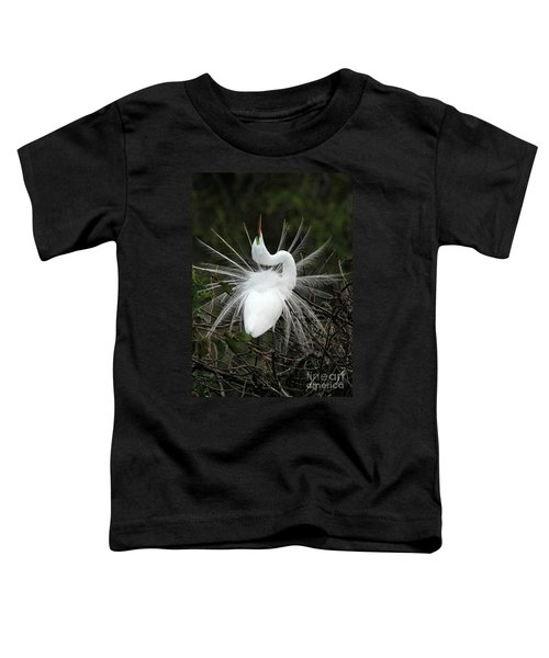 Fabulous Feathers Toddler T-Shirt