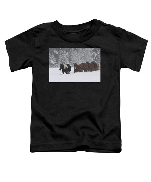 Faith Will Bring You Home Toddler T-Shirt
