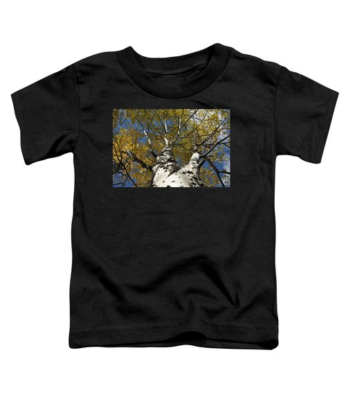 Fall Aspen Toddler T-Shirt