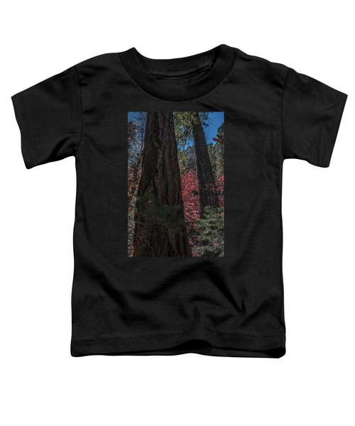 West Fork Perspective Toddler T-Shirt