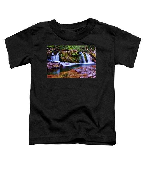 Fall Creek Oregon 3 Toddler T-Shirt