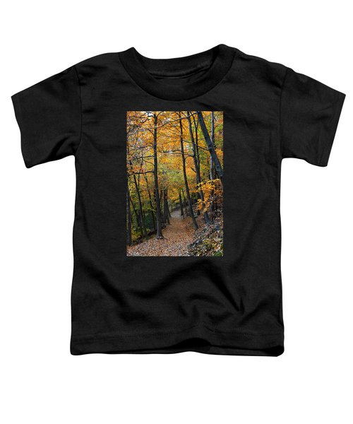 Fall Foliage Colors 03 Toddler T-Shirt