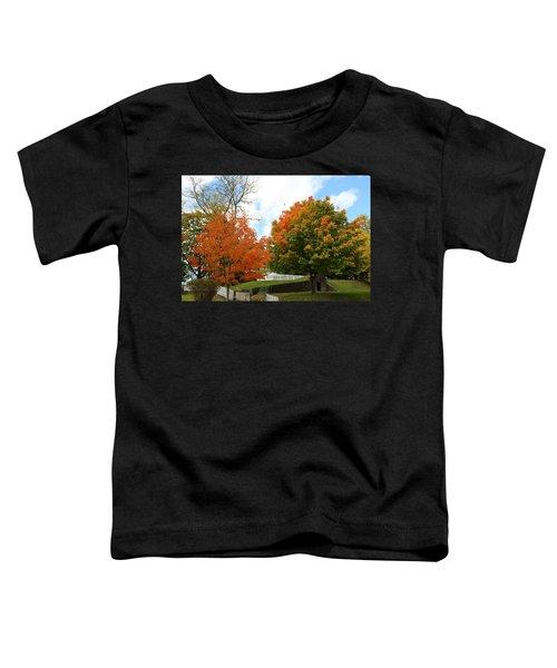 Fall Foliage Colors 09 Toddler T-Shirt
