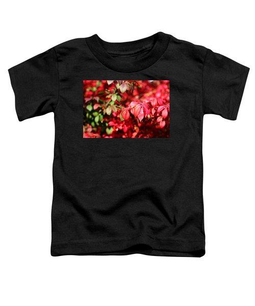 Fall Foliage Colors 10 Toddler T-Shirt