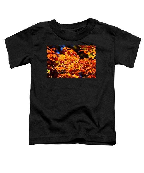 Fall Foliage Colors 16 Toddler T-Shirt