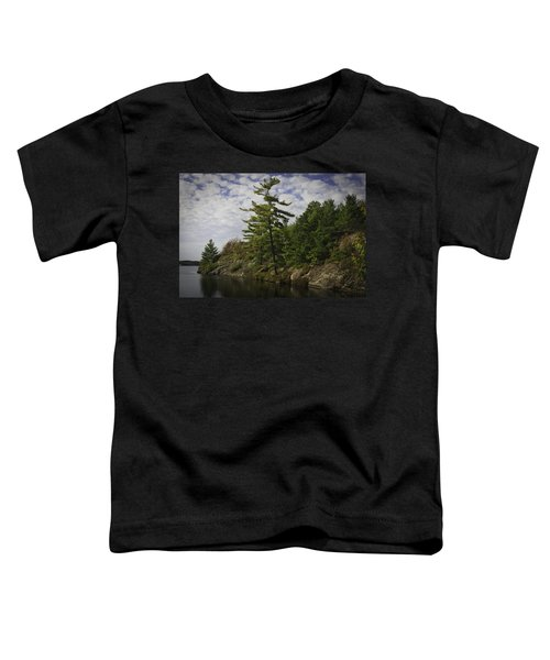 Fall In Northern Ontario Toddler T-Shirt