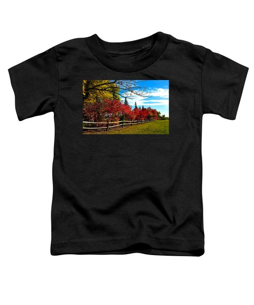 Toddler T-Shirt featuring the photograph Fall Lineup by Susan Kinney