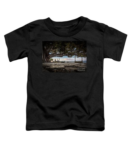 Ficus Magnonioide In The Alameda De Apodaca Cadiz Spain Toddler T-Shirt