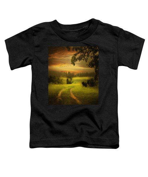 Fields Of Dreams Toddler T-Shirt