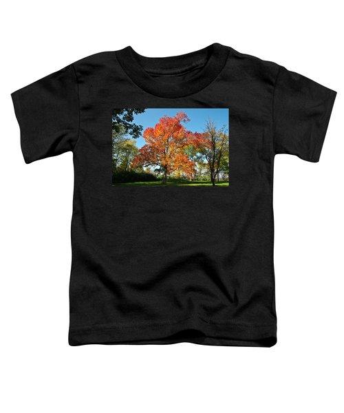 Fiery Fall Toddler T-Shirt