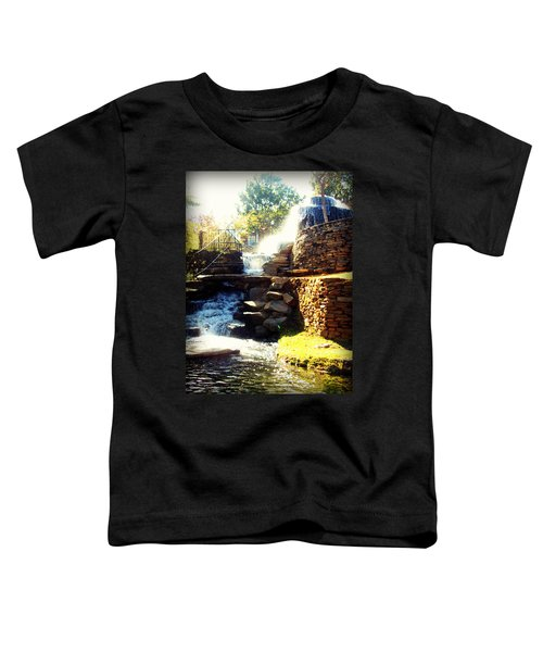 Finlay Park Fountain Toddler T-Shirt