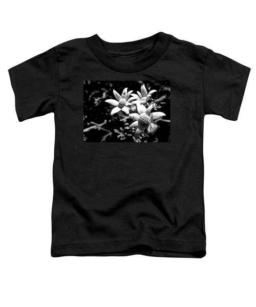 Toddler T-Shirt featuring the photograph Flannel Flower by Miroslava Jurcik