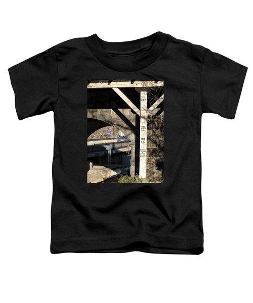 Flood Height Sign At Ellicott City Maryland Toddler T-Shirt