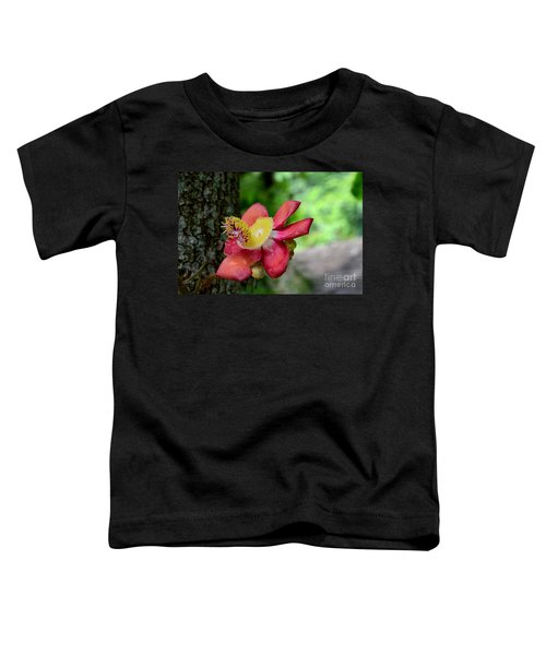 Flower Of Cannonball Tree Singapore Toddler T-Shirt