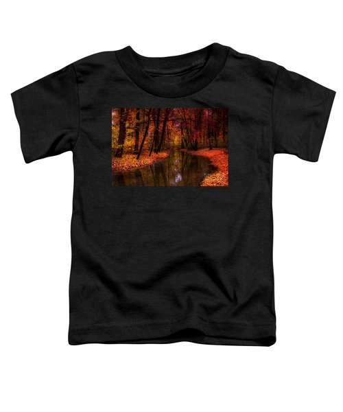 Flowing Through The Colors Of Fall Toddler T-Shirt