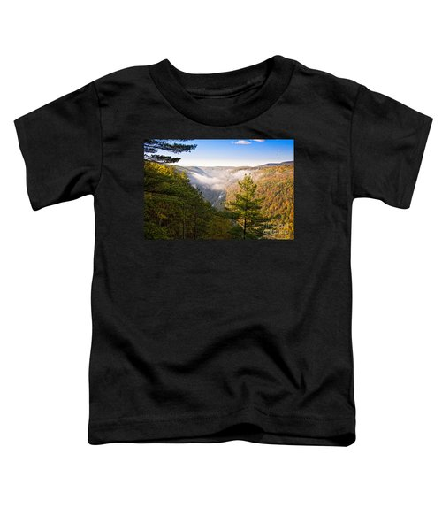 Fog Over The Canyon Toddler T-Shirt