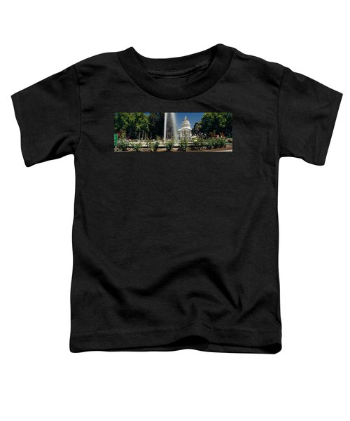 Fountain In A Garden In Front Toddler T-Shirt by Panoramic Images
