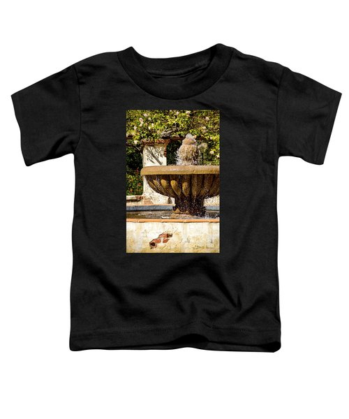 Fountain Of Beauty Toddler T-Shirt by Peggy Hughes