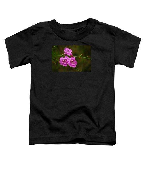 Free Toddler T-Shirt