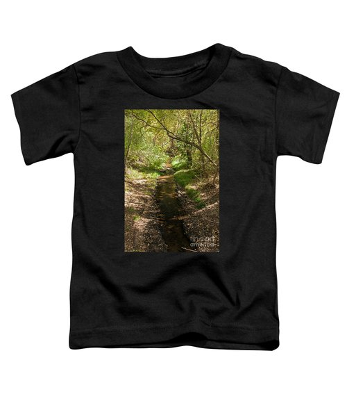 Frijole Creek Bandelier National Monument Toddler T-Shirt