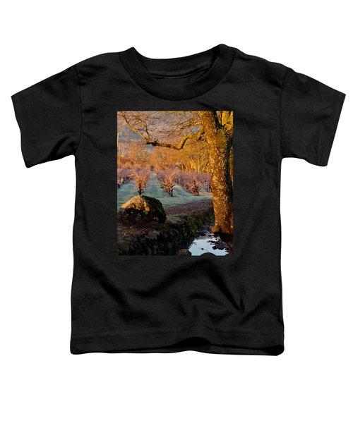 Frost In The Valley Of The Moon Toddler T-Shirt