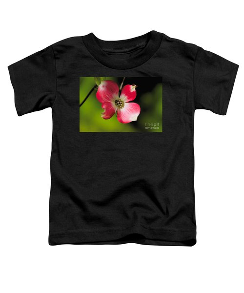 Fruit Tree Flower Toddler T-Shirt