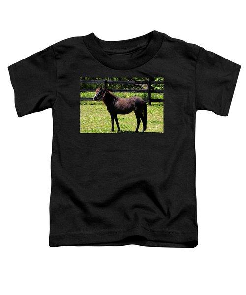 Furry Pony Toddler T-Shirt