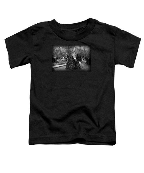 Garden Of Gethsemane Olive Tree Toddler T-Shirt