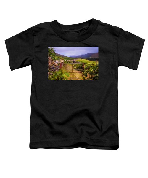 Gates On The Road. Wicklow Hills. Ireland Toddler T-Shirt