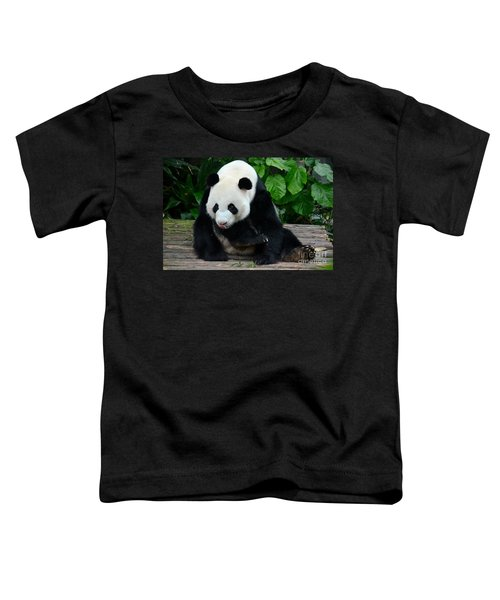 Giant Panda With Tongue Touching Nose At River Safari Zoo Singapore Toddler T-Shirt