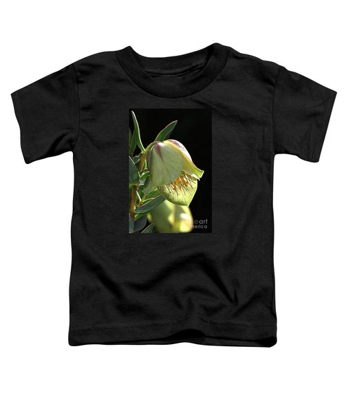Glow Of The Bell Toddler T-Shirt