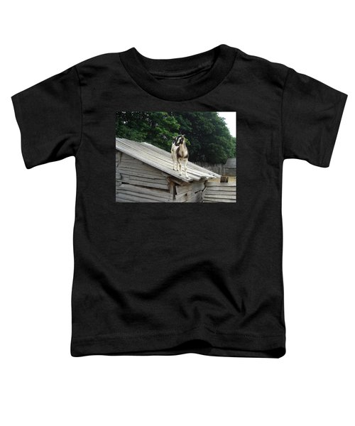 Goat On The Roof Toddler T-Shirt