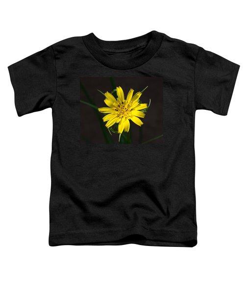 Goats Beard Flower Toddler T-Shirt
