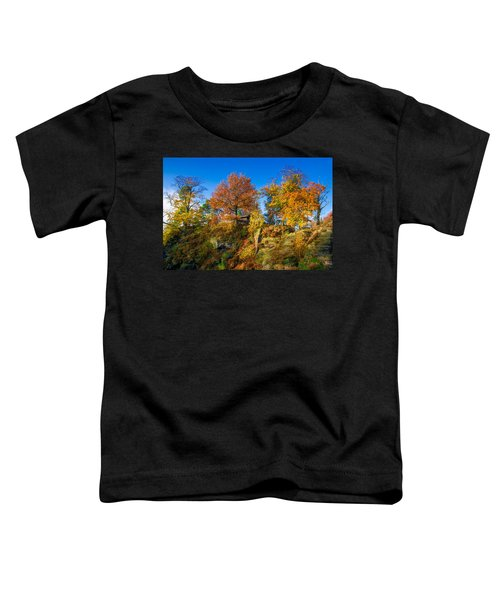 Golden Autumn On Neurathen Castle Toddler T-Shirt