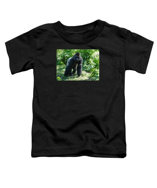 Gorilla In The Midst Toddler T-Shirt