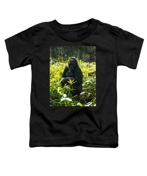 Gorilla Sitting On A Stump Toddler T-Shirt