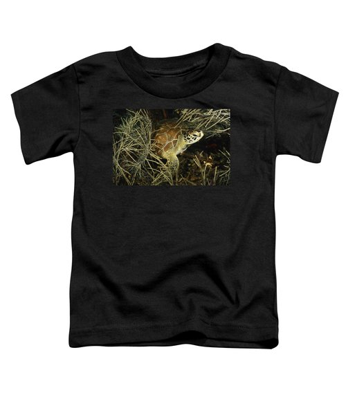 Green Turtle In Soft Corals Toddler T-Shirt