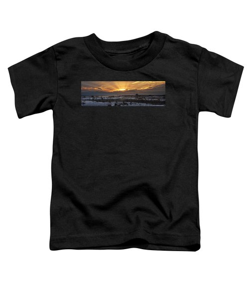 Gulf Shores From Pavilion Toddler T-Shirt