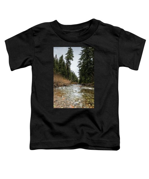 Hackleman Creek  Toddler T-Shirt