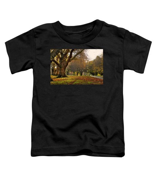 Hagley In Autumn Toddler T-Shirt