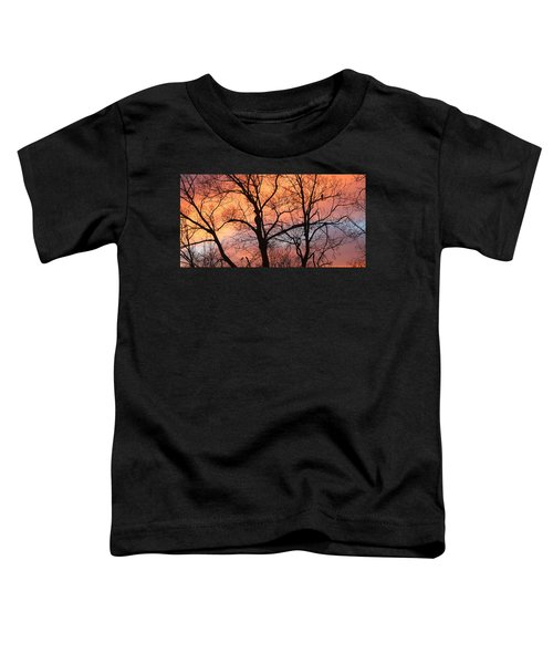 Hawk At Sunrise Toddler T-Shirt