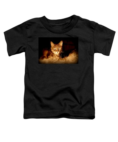 Hay There Toddler T-Shirt