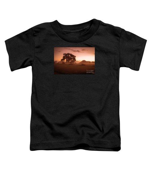 Hazy Morn Toddler T-Shirt