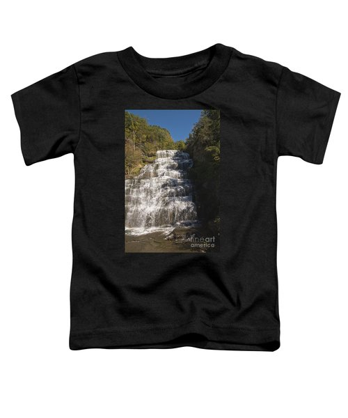 Hector Falls Toddler T-Shirt