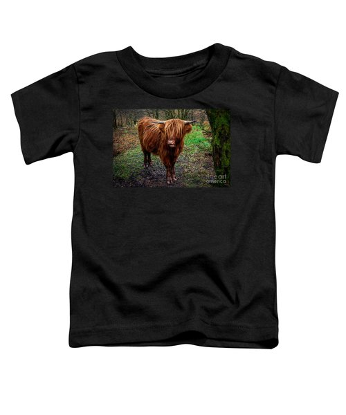 Highland Beast  Toddler T-Shirt