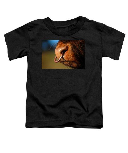 Highland Bull Toddler T-Shirt