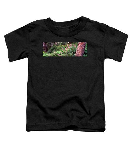 Hollyhock Alcea Rosea Flowers Toddler T-Shirt