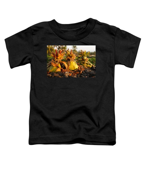 Hookupu At Sunset Toddler T-Shirt