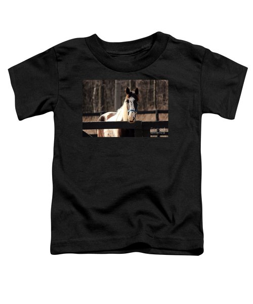 Horse At The Gate Toddler T-Shirt