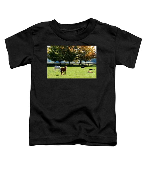 Horses In Fall Toddler T-Shirt